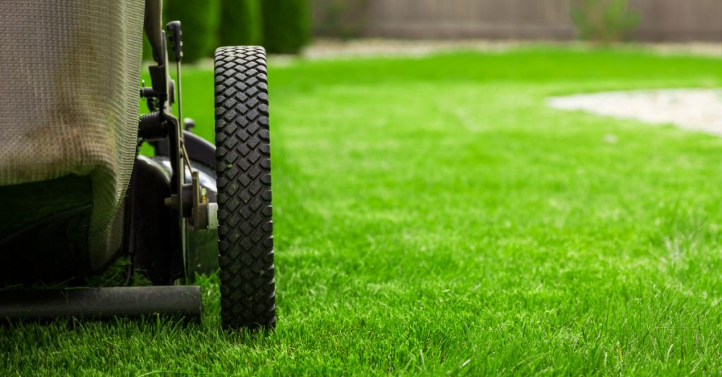 Lawn Care Services in Southern Utah