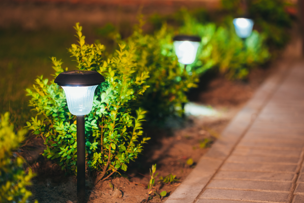 6 Excellent Landscape Lighting Ideas