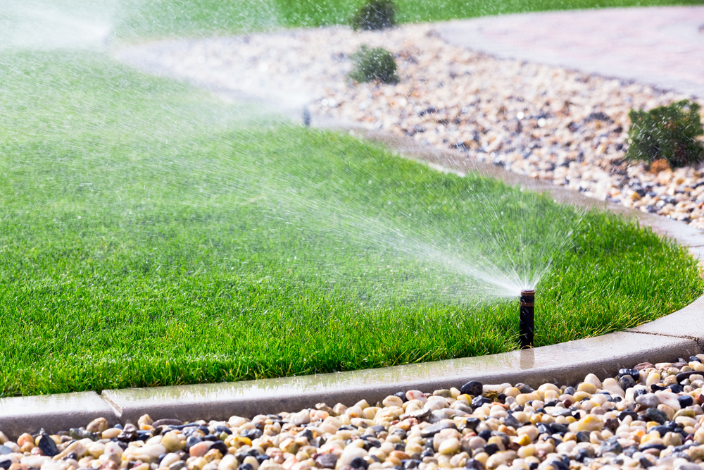 What Is The Difference Between Drip Irrigation And A Sprinkler System?